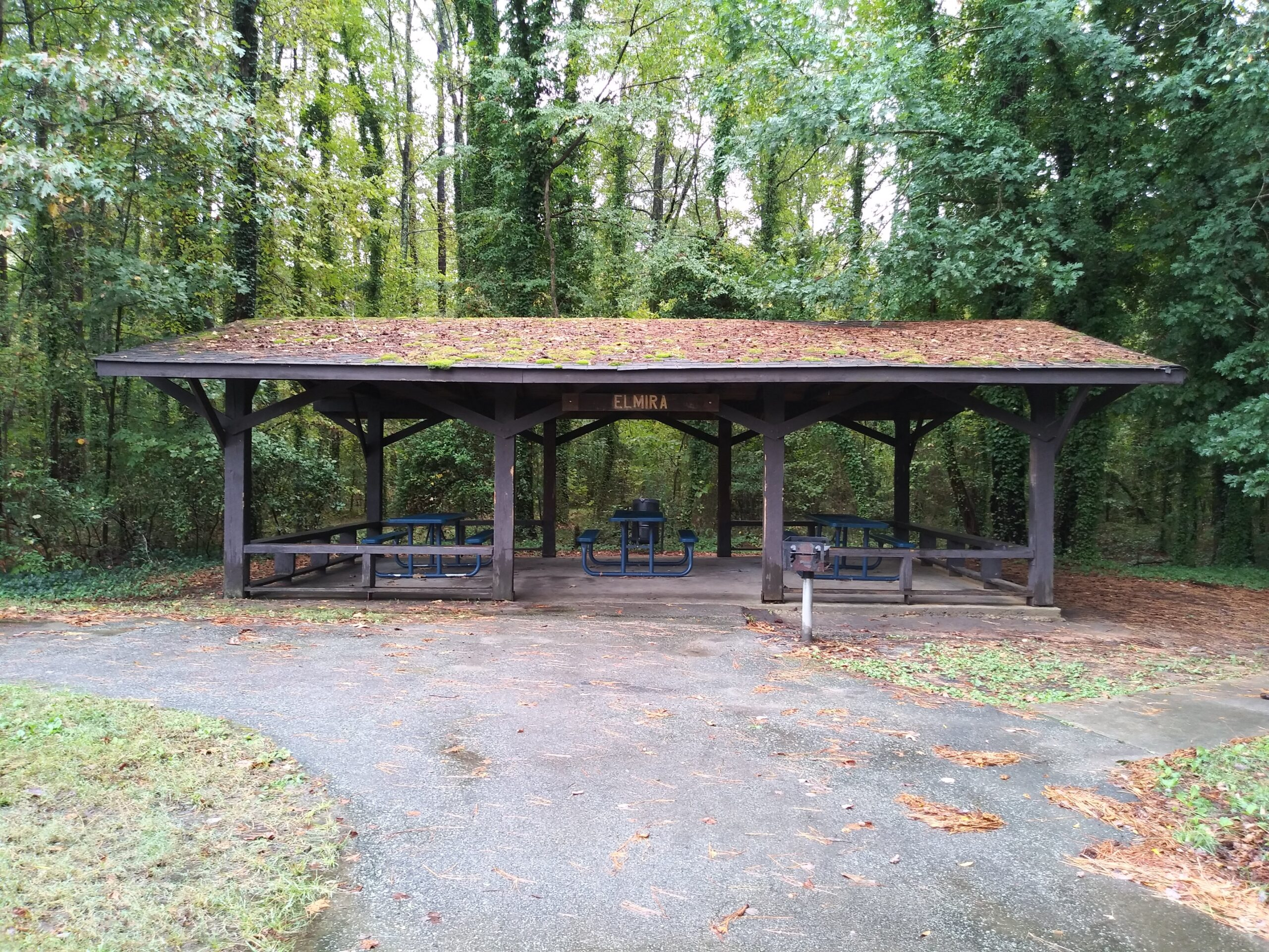 Elmira Park (06)